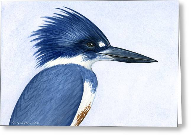 Kingfisher Portrait Greeting Card by Charles Harden