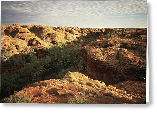 Clouds Over Canyon Greeting Cards - Kings Canyon, Central Australia Greeting Card by David Kirkland