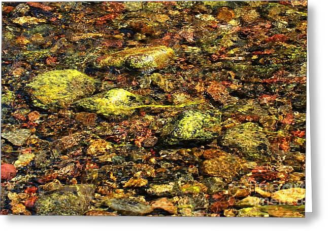 North Fork Greeting Cards - Kintla Lake River Rocks Greeting Card by Adam Jewell