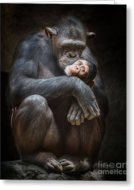 Kiss From Mom Greeting Card by Jamie Pham