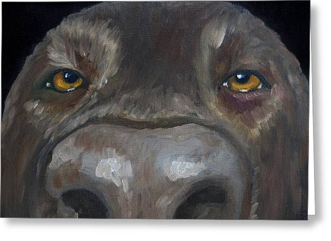 Chocolate Lab Greeting Cards - Kiss My Nose Greeting Card by Roger Wedegis
