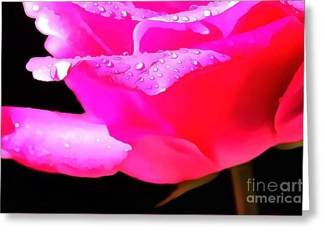Rose Petals Greeting Cards - Kiss Of Rain Greeting Card by Krissy Katsimbras