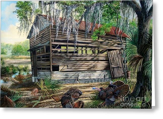 Moss Greeting Cards - Kissimmee River cattle House-Osceola Morning Greeting Card by Daniel Butler