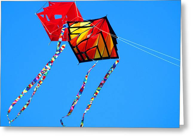 Kite Greeting Cards - KiteFlying3 Greeting Card by Robert Trauth