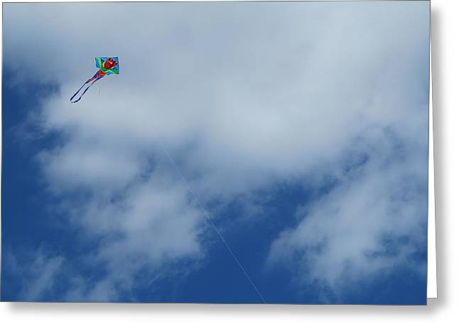 Kite Greeting Cards - Flying High Greeting Card by Justin Bennett