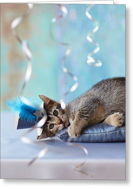 Streamers Greeting Cards - Kitten Wearing A Party Hat Lying Greeting Card by Gillham Studios