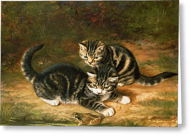 Playful Kitten Greeting Cards - Kittens   Greeting Card by Horatio Henry Couldery