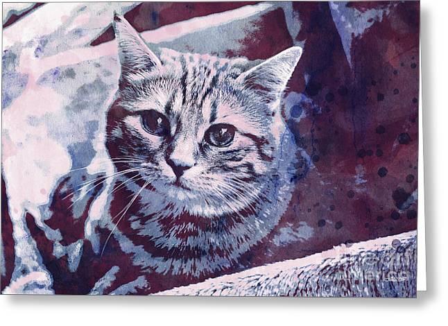 Kitty Cat Greeting Card by Jutta Maria Pusl