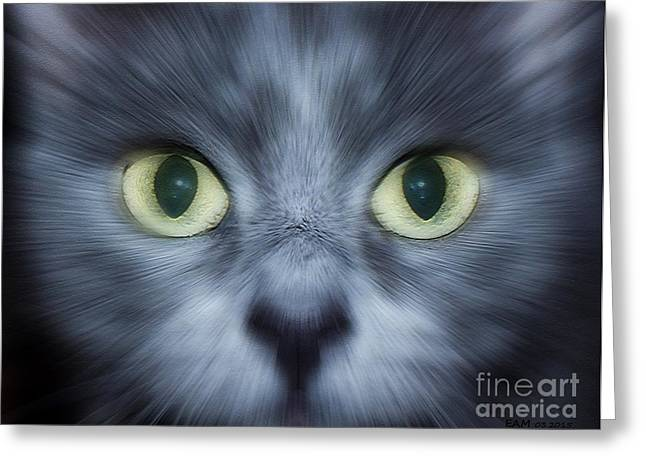 Veterinary Digital Greeting Cards - Kitty Face Greeting Card by Elizabeth McTaggart