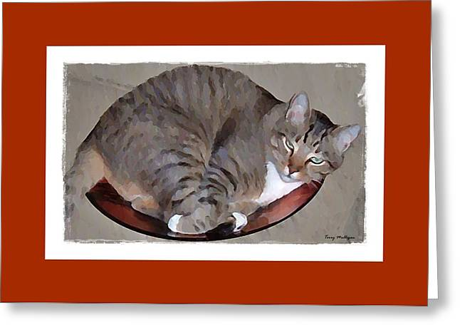 Kitty in a Bowl Greeting Card by Terry Mulligan