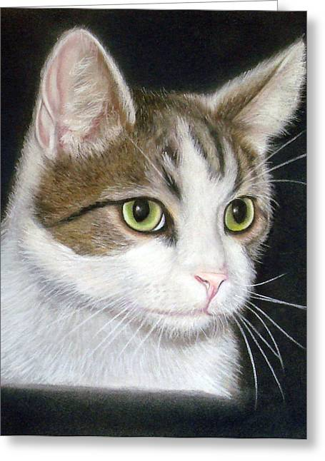 Kitty The Cat Greeting Card by Mary Mayes