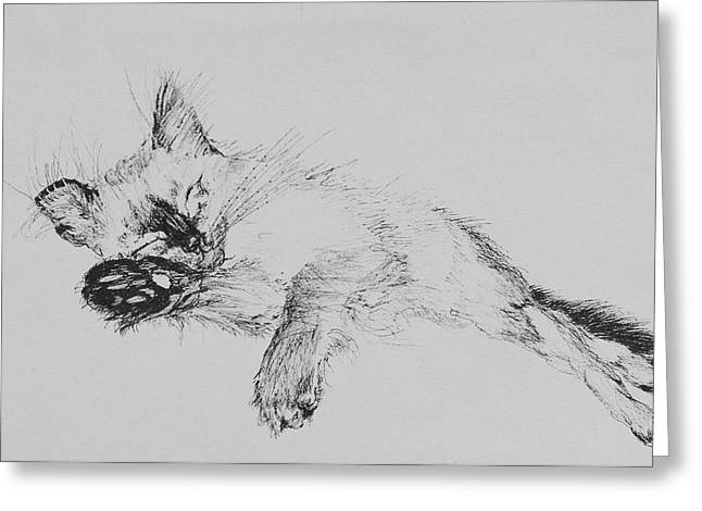 Cute Kitten Drawings Greeting Cards - Kitty Greeting Card by Vincent Alexander Booth