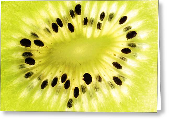 Kiwi Fruit Greeting Card by Paul Ge