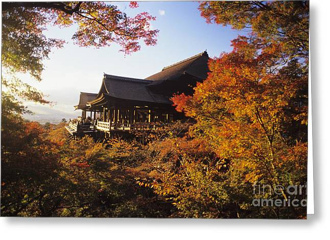 Clear Fall Day Greeting Cards - Kiyomizu Temple Greeting Card by Allan Seiden - Printscapes