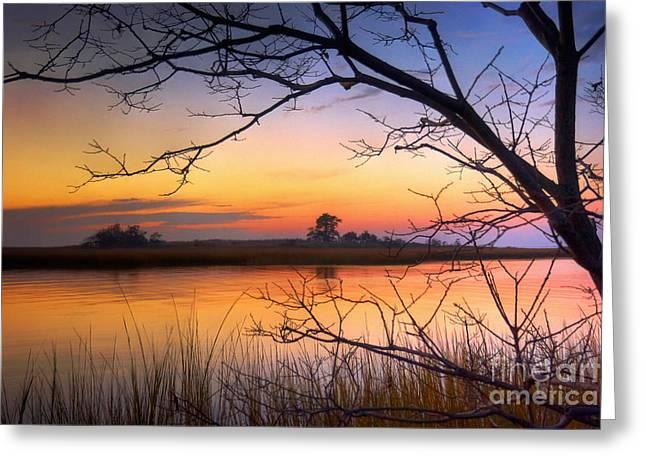 Eastern Shore Greeting Cards - Knapps Narrows Marshland Greeting Card by Susan Isakson