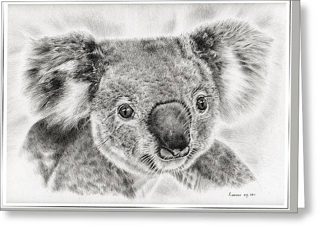Koala Newport Bridge Gloria Greeting Card by Remrov