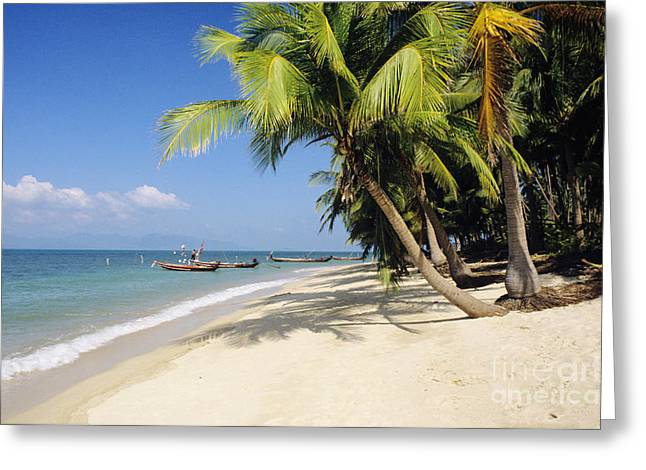 Koh Samui Greeting Cards - Koh Samui Greeting Card by William Waterfall - Printscapes