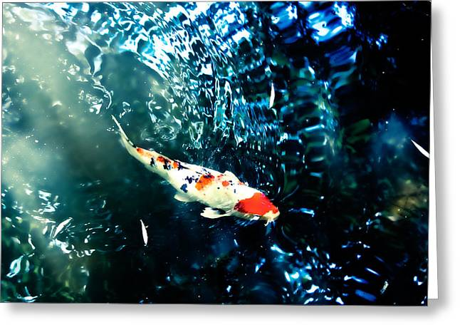 Abstract Expression Greeting Cards - Koi in Rippled Waters Greeting Card by Colleen Kammerer