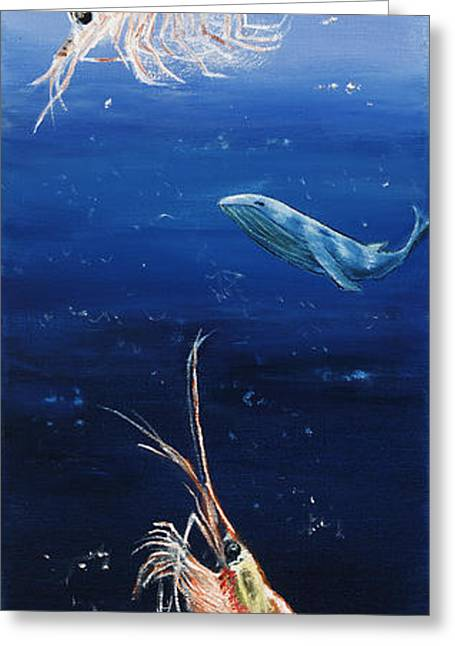 Krill Greeting Card by Debra Bailey