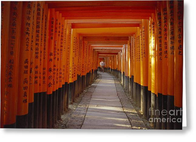 Kyoto Greeting Cards - Kyoto Torii Greeting Card by Rita Ariyoshi - Printscapes