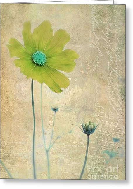 L Elancee - V11t3 Greeting Card by Variance Collections