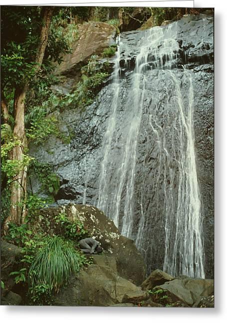 La Coca Waterfall Greeting Cards - La Coca Falls 2 Greeting Card by Filippo Ioco