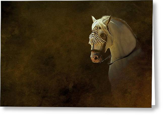 Horse Portrait Photographs Posters Greeting Cards - La Entrada Greeting Card by Andy Armfield