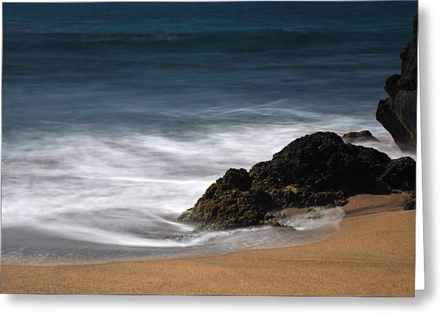 La Perouse Bay Beach Greeting Card by Jennifer Ancker