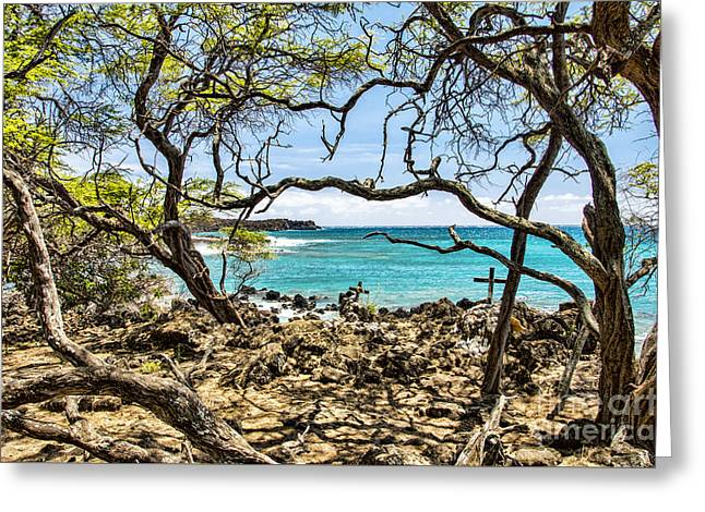 La Perouse Bay Views Greeting Card by Keith Ducker