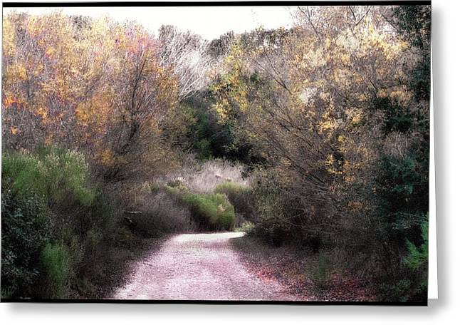 Country Dirt Roads Digital Greeting Cards - La Purisima Mission Trail Greeting Card by Lynn Andrews