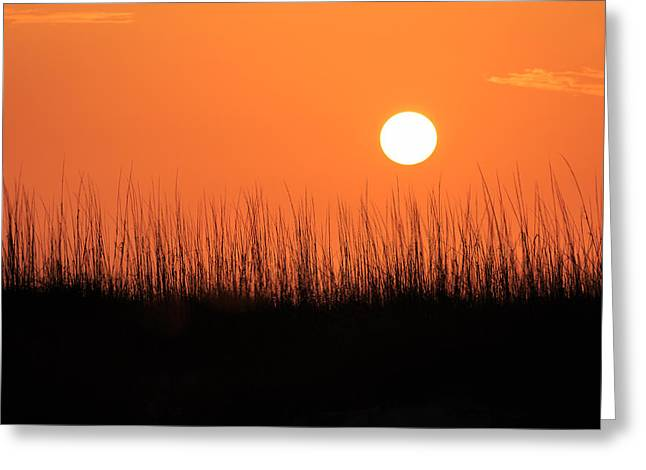 On The Beach Greeting Cards - La Salida Del Sol  Greeting Card by Gary Oliver