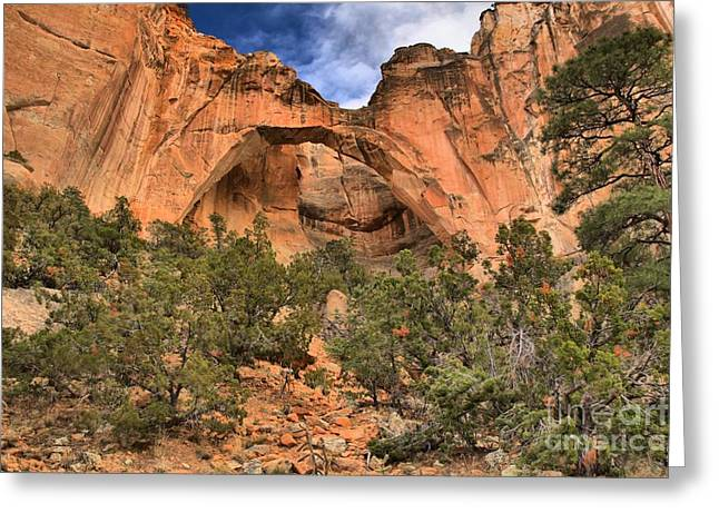 Ventana Greeting Cards - La Ventana Arch Greeting Card by Adam Jewell