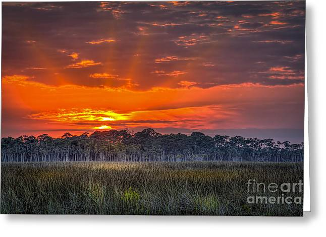 Gulf Of Mexico Scenes Greeting Cards - Labor Of Love Greeting Card by Marvin Spates