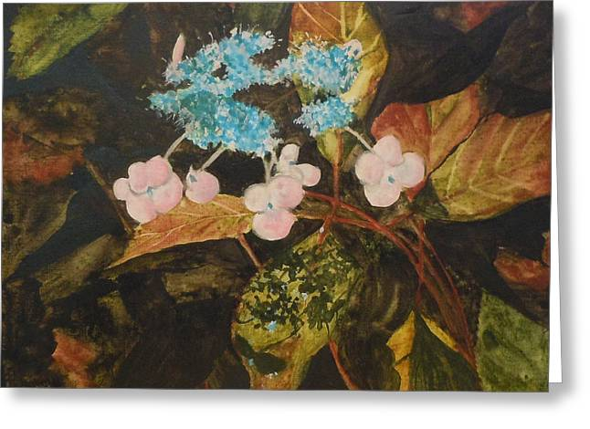 Lace Cap 2 Greeting Card by Jean Blackmer