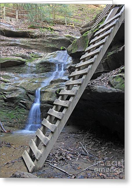 Turkey Run State Park Greeting Cards - Ladder trail at Turkey Run  Greeting Card by Steve  Gass