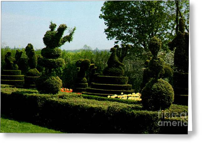 Ladew Topiary Gardens Greeting Card by Ruth  Housley
