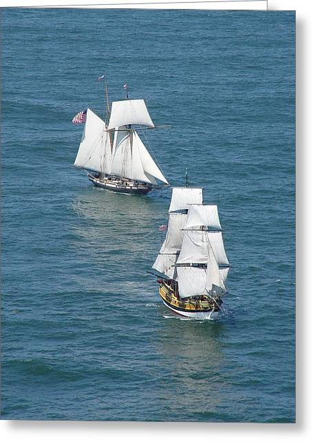 Tall Ship Greeting Cards - Lady  and the Lynx Greeting Card by Mike Coverdale