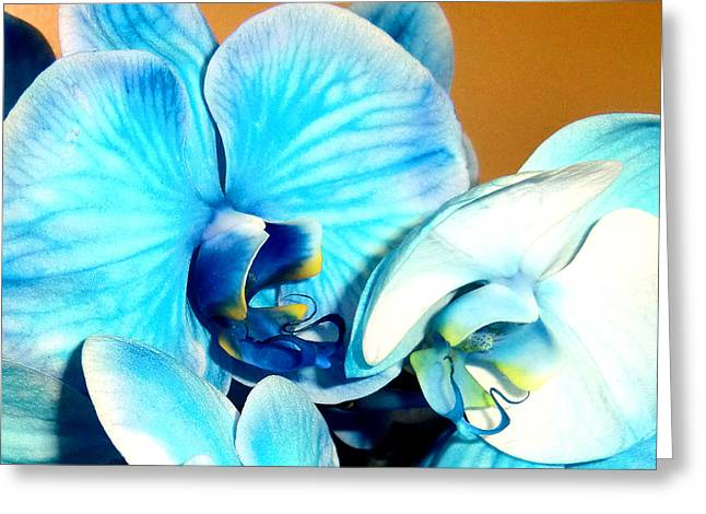 Ohio ist Digital Greeting Cards - Lady Blues Greeting Card by Mindy Newman