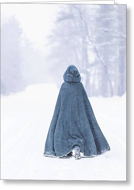 Lady Of Winter Greeting Card by Evelina Kremsdorf