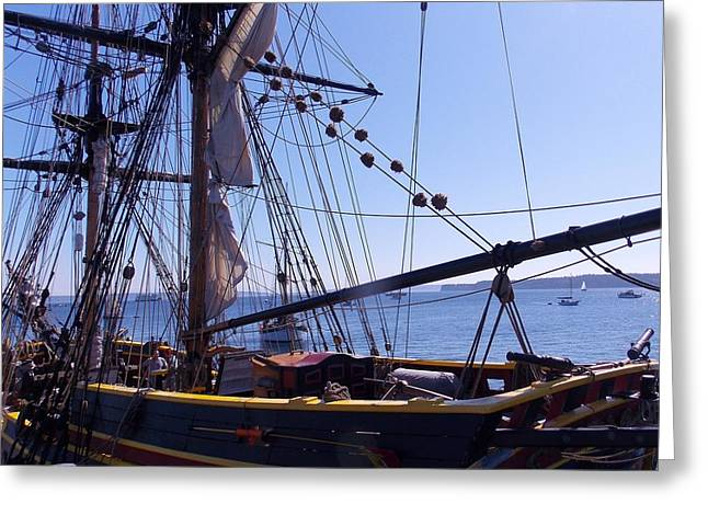 Lady Washington Greeting Cards - Lady Washington At The Dock Greeting Card by Patti Walden