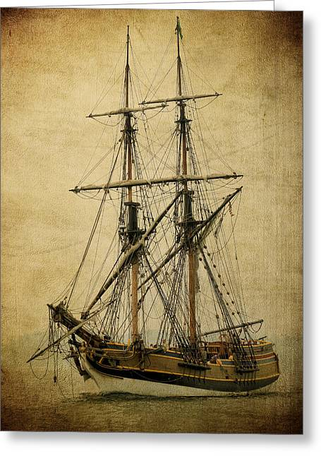 Lady Washington Greeting Cards - Lady Washington Pirate Ship Greeting Card by Athena Mckinzie