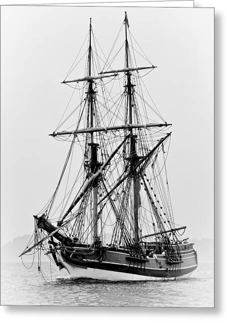 Lady Washington Greeting Cards - Lady Washington Tall Ship Greeting Card by Athena Mckinzie