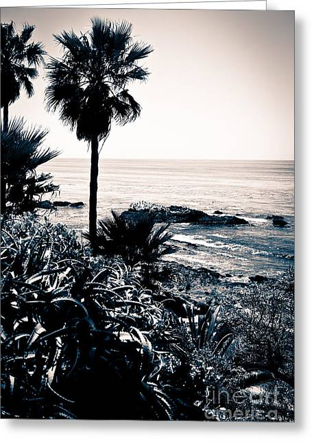 Orange County Greeting Cards - Laguna Beach California Black and White Greeting Card by Paul Velgos
