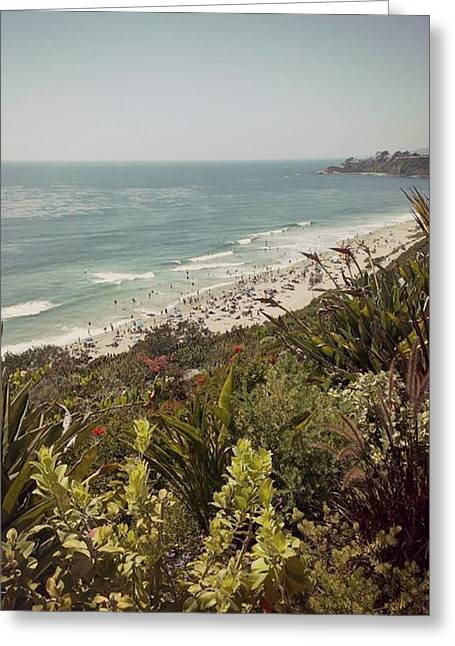 Beach Photos Drawings Greeting Cards - Laguna Beach  Greeting Card by Missy  Brage