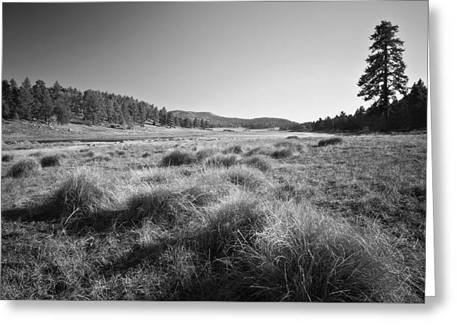 Laguna Meadows And Big Laguna Greeting Card by Alexander Kunz