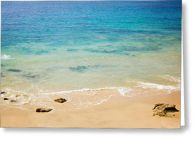 Ocean Shore Greeting Cards - Laguna Shore Greeting Card by Clearframe Gallery