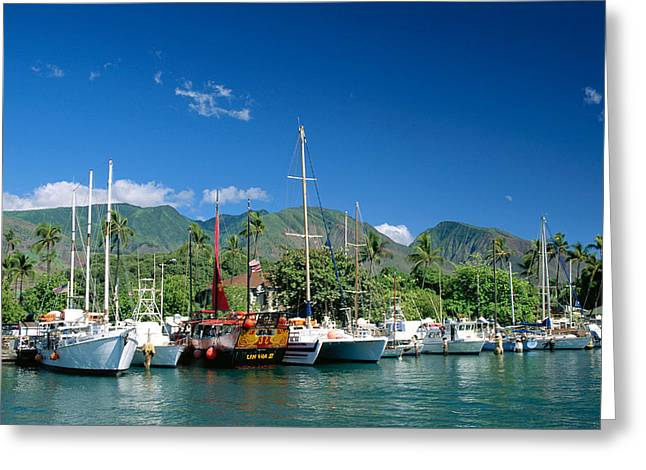 Lahaina Greeting Cards - Lahaina Harbor - Maui Greeting Card by William Waterfall - Printscapes