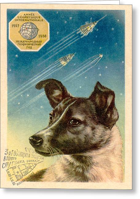 Recently Sold -  - Experiment Greeting Cards - Laika The Space Dog Postcard Greeting Card by Detlev Van Ravenswaay