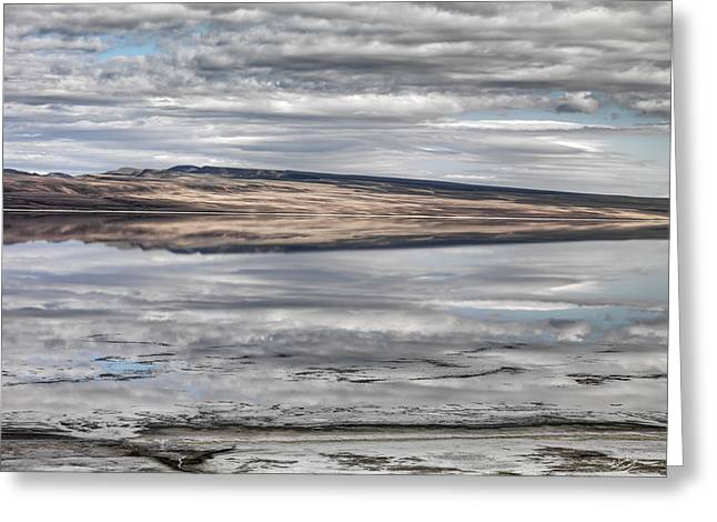 Lake Abert Reflections Greeting Card by Leland D Howard
