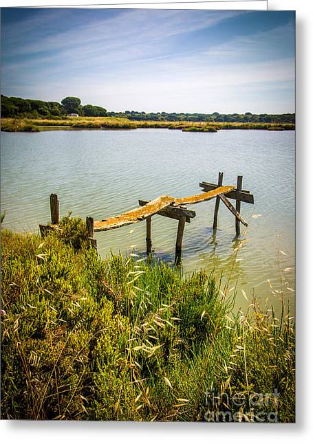 Park Scene Photographs Greeting Cards - Lake and Pier Greeting Card by Carlos Caetano